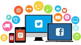 Manage social media and website