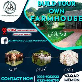 Farm House, Cattle Farm & Dairy Farm