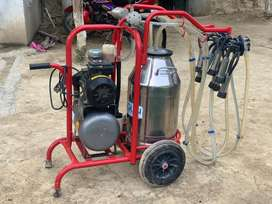 Milking Machine For Sale