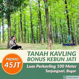 Jual Kavling Serbaguna Murah Pinggir Jalan Raya Bonus Pohon Jati