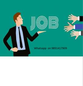MBA, BBA , B.Tech Freshers required for HR recruiter job(MG)