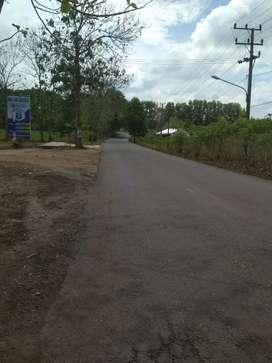 Kavling Murah dekat GRIYA KEBUN & UM kampus 3
