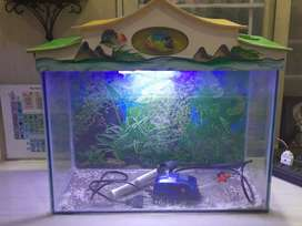 Fish Tank with Top Cover