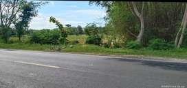 TANAH STRATEGIS BUAT PABRIK BISA, Jl.raya pantura nasional Pambon