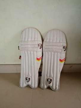 Sg cricket pads
