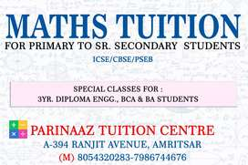 Maths and Punjabi tuitions from 5 to graduation