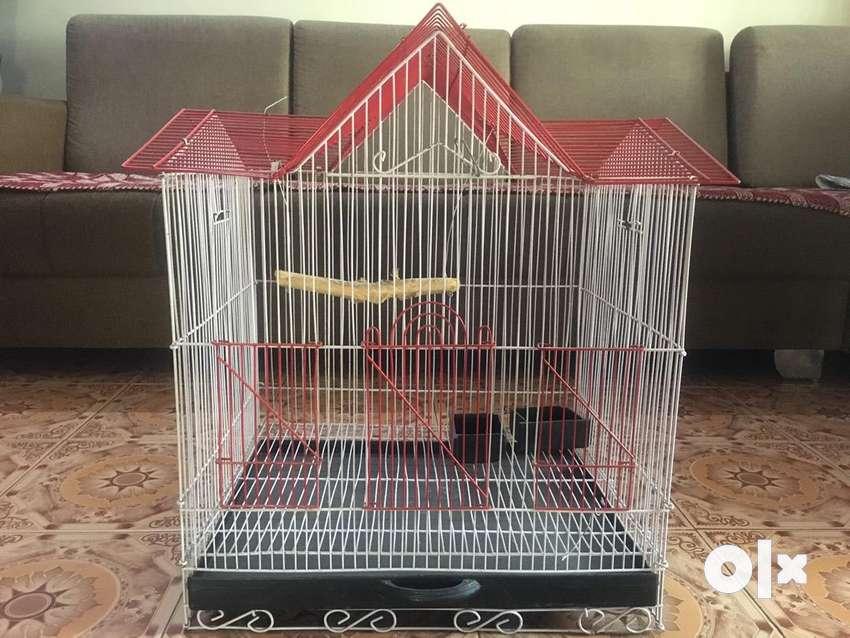 Hut Shape Birds Cage