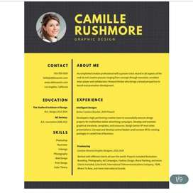 Professional Resume and CV writing