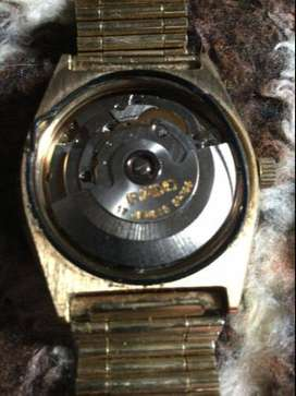 Rado stag for sale