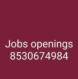 We are well government registered we are providing online job