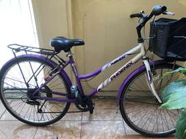 Sepeda Minion Phoenix lady