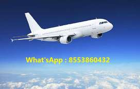 Airline Jobs Training & Placement