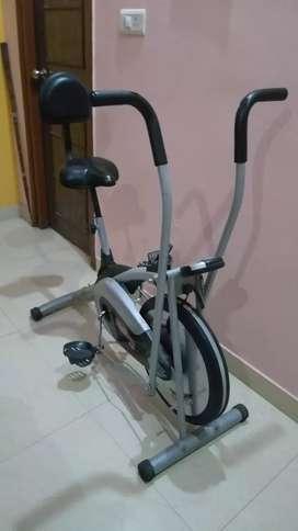 Platinum air bike