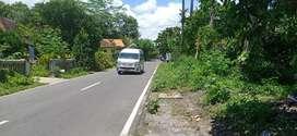 Tanah murah Borobudur Barepan