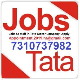 Jobs in submit your Resume company (HR) what's app no   73107,37982
