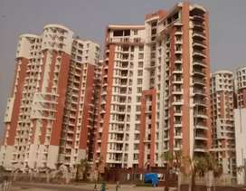 S.D.S N.R.I flat negotiable price