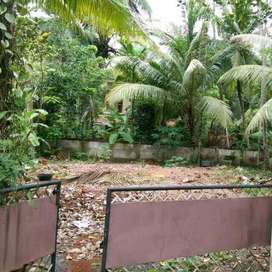 8 cents of residential land. 500 meters from highway. 1  km from templ