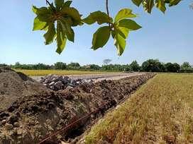 Jual Tanah Kavling Strategis Madina Asri Desa Menuran Baki