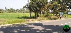 Tanah Pekarangan Area Jl Gedongan Sleman (RI 155)