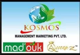 Kosmos  management marketing Pvt LTD