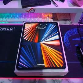 iPad Pro 11 2018 Silver 256Gb Fullset Mulus BH 90% 3utools Ijo Semua