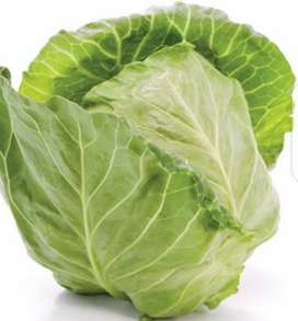 Wholesale vegetables