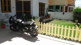 1BHK HOUSE  for rent.