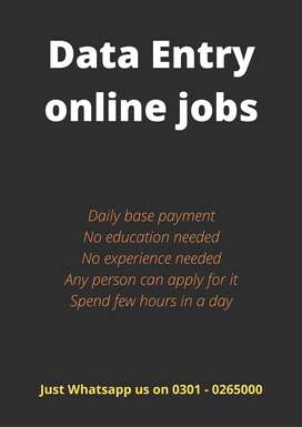 Daily base work and daily base earnings Data Entry online jobs at home