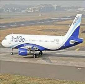 Airlines job opend Apply Fast