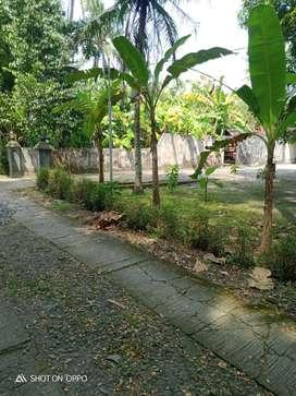 100 JUTA TANAH WATES Lokasi 920m UPTD Puskesmas Wates JK7956