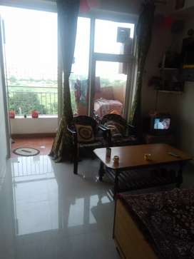 1 bhk furnished prime location