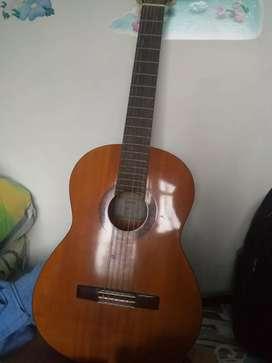 Gitar akustik Yamaha C-315