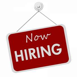 Typing job for students on daily basis. 675
