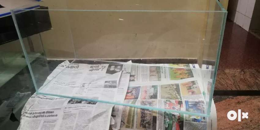 Brand new Extra clear glass tank 0