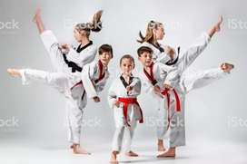 Karate Instructor at home
