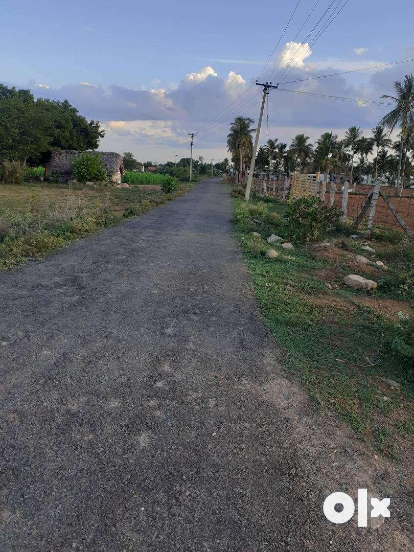 Luxurius plot at middle class budget  in palpakki  village 0