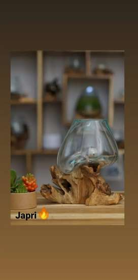 Dijual Aquarium akar