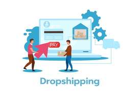 Sales and Marketing Executive for Dropshipping Business