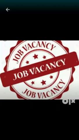 Any one want to job contact me,