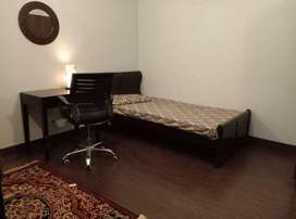 Executive hostel/paying guest