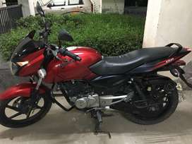 Pulsar 150 cc fantastic  condition