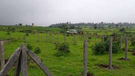 Plots for Sale in Gated Township near Mumbai on Bank Loan
