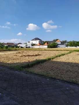 Tanah Sewa Sahadewa Dekat Villa Canggu