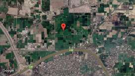 Agriculture/industrial land best has investment location in Lahore