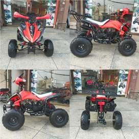 110cc Raptor Atv Quad 4 Wheels Bikes Deliver In All Pakistan