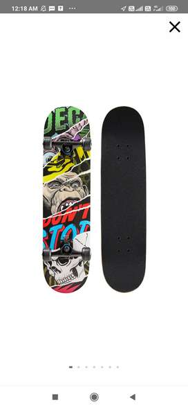 Professional Skateboard and safety equipment