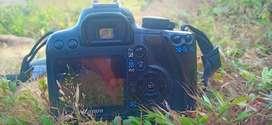 Canon1000d camera