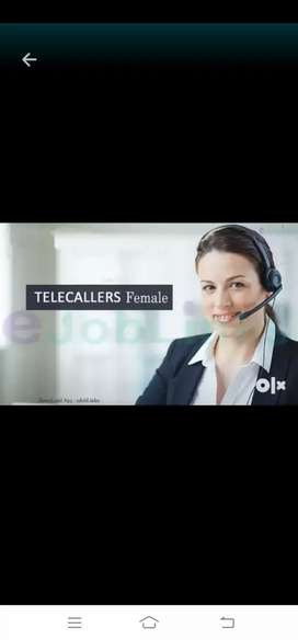 Telecaller and system work female only