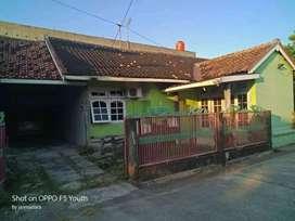 rumah pribadi dan rumah walet