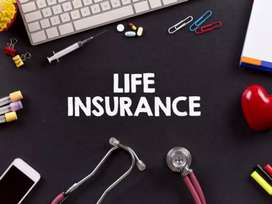 Kannur/Life Insurance/Degree pass/Field Sales job/Fixed Salary